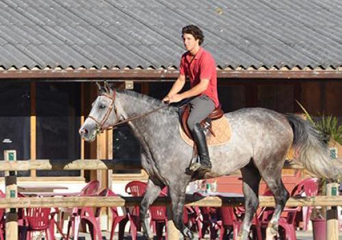 Centre Equestre - Club Hippique